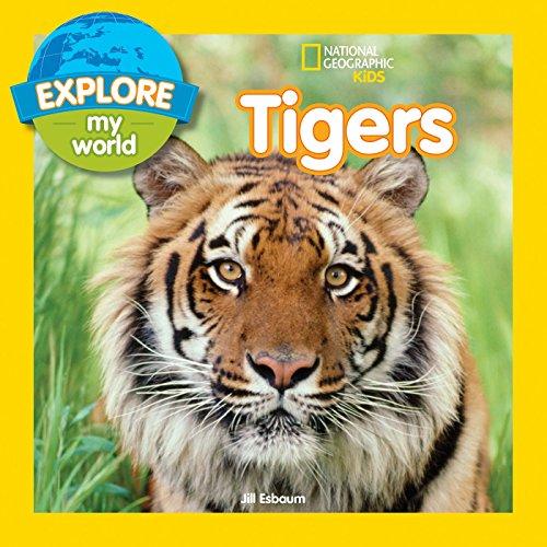 Explore My World Tigers por Jill Esbaum