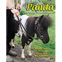 Panda: A Guide Horse for Ann
