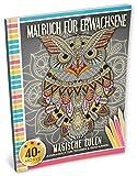 Malbuch für Erwachsene: Magische Eulen (Kleestern®, A4 Format, 40+ Motive) (A4 Malbuch für Erwachsene) - Kleestern Malbücher
