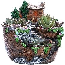 ounona plantas suculentas maceta con resina en miniatura jardín de hadas Casa