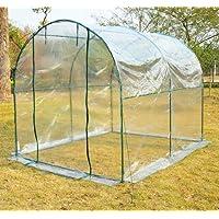 Outsunny-Invernadero de jardín 250 x 200 x 200 cm-cultivo de plantas