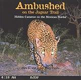 Best Caméras Trail - Ambushed on the Jaguar Trail: Hidden Cameras on Review
