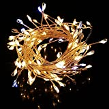 Decoration Lights For Dasara, Diwali, Christmas & New Year, Best Decorative Rope Bulbs In 7 Colors (1No. Only) Decoration Lights For Festivals