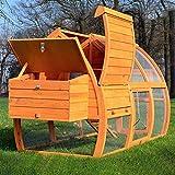 Zooprimus  Poulailler en bois pour jardin extérieure 2/5 poules  cage canard 2 perches 172x76x102 cm 126 Grande Poule