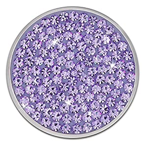 Amello Edelstahl Coin Zirkonia lila für Coinsfassung – 30 mm, Größe M Edelstahlschmuck ESC301V