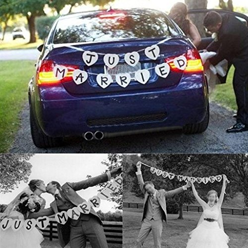 Just Married Wedding Bunting Banner Decoration