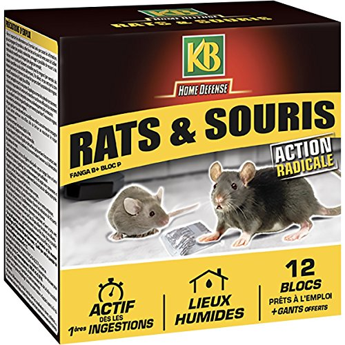 KB HOME DEFENSE, Blocs Appat Anti Rats et Souris, 240 gr