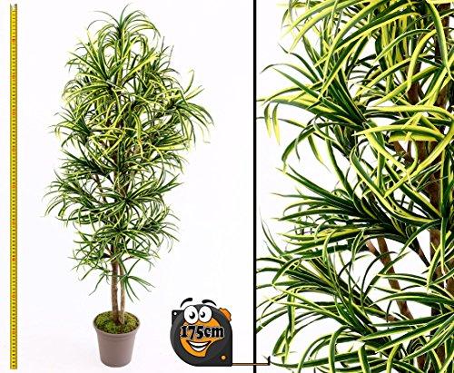 Yucca Kunstpalme Mini mit 672 Textilfaser Blätter grün gelb 175cm hoch, Naturstämme