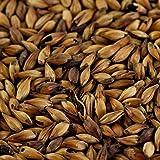 1kg Caramelmalz Caraaroma für Braunbiere EBC 300-400