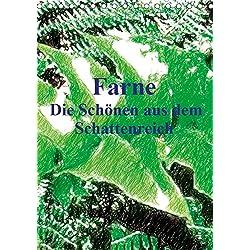 Farne - Die Schönen aus dem Schattenreich (Tischkalender 2019 DIN A5 hoch): Dieser Kalender ist ein individueller Einblick in diese einmalige Welt der ... (Monatskalender, 14 Seiten ) (CALVENDO Natur)