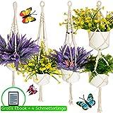 Migarda Makramee Blumenampel 4er Set für 5 - Deko Hängetopf - Blumenampeln zum aufhängen für innen und außen - Pflanzentopf Blumen Hängepflanze Blumentopf hängend - inkl eBook - 4 Schmetterlinge