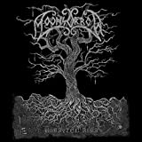 Moonsorrow: Jumalten Aika (2LP+CD im Klappcover) [Vinyl LP] (Audio CD)