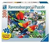 Ravensburger - Puzzle con marco, 300 piezas (13534)