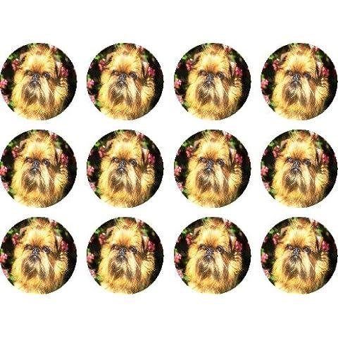 Griffon Bruxelles (%23 edible cake toppers oro (confezione di 12 di 38 mm, 3,81 cm (1,5