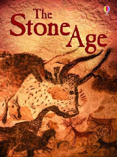 Stone Age (Beginners) by Jerome Martin (2015-08-01)