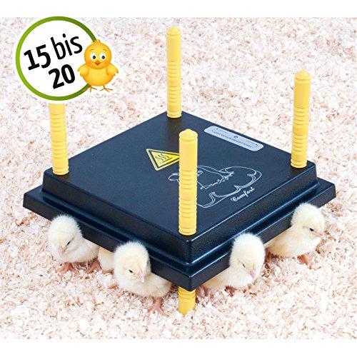 Wärmeplatte 25x25cm 15W Küken-Aufzucht Wärmelampe Geflügel Hühner - 2