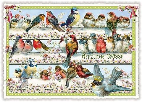 Nostalgische Postkarte mit Glitzer * Vögel im Frühling * Herzliche Grüße