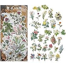 33 cm IHR Peacock Garden Confezione da 20 tovaglioli di Carta Quadrati con pavoni e Fiori
