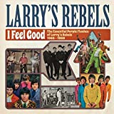 I Feel Good - The Essential Purple Flashes Of Larry's Rebels 1965-1969