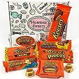 Confezione Piccola Assortita di Snack Reeses | Barrette Cioccolato Perfetta Idea Regalo di Natale e Compleanno | Selezione di Cioccolatini al Burro di Arachidi | 9 pezzi in Confezione Vintage di Cartone