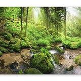 murando - Fototapete selbstklebend Wald 294x210 cm decor Tapeten Wandtapete klebend Klebefolie Dekofolie Tapetenfolie - Natur Bäume grün c-B-0374-a-a