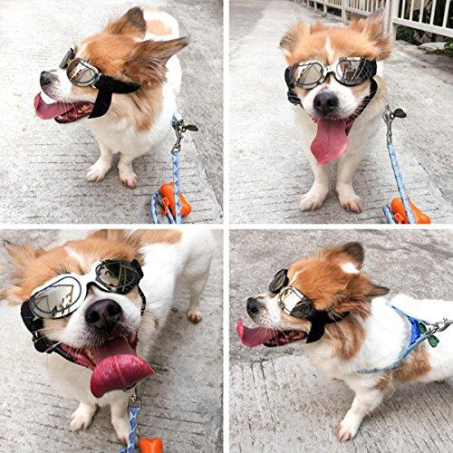 Aolvo Dog Sonnenbrille, UV-Schutz Winddicht Brillen Anti-Fog Hund Sonnenbrille für Haustier mit Verstellbarem Riemen, Trendige Eye Protcetion Hund Google für Kleine Mittlere Große Hunde bis 6,8kg -