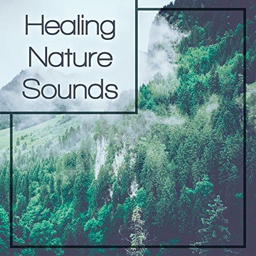 Organic Sounds -