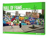 Hall of Fame: New York City Collector's Edition (On the Run (from Here to Fame Hardcover))