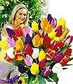 BALDUR-Garten Schnitt-Tulpen-Mischung, 120 Zwiebeln von Baldur-Garten - Du und dein Garten