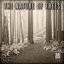 The Nature of Trees 2018 Calendar