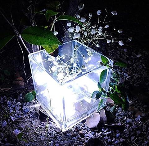 Chaîne de lampe à la maison Elyseesen 2 m 20LED bouton Cell Powered Silver fil de cuivre mini guirlande lumières (blanc)