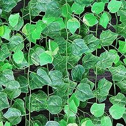 Enredaderas con plantas y flores artificiales, ratán color verde, 2,40 m de longitud, para decoración del hogar, 10unidades, de MyLifeUNIT, plástico, hojas de parra, 95 Inch