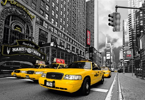 photo-wall-mural-new-york-97008-350x260-cm-in-7-strips-each-50-cmx260cm-high-quality-photorealistic-