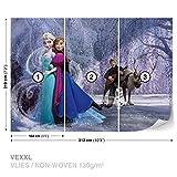DekoShop Disney Frozen Vlies Fototapete Tapete Vliestapete Disney Eiskönigin AD1632VEXXL (312cm x 219cm) Photo Wallpaper Mural