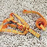 #4: PETS EMPIRE Strong Adjustable Matching Nylon Dog Harness and Leash Set