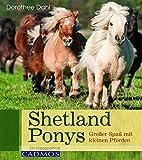 Shetland Ponys: Großer Spaß mit kleinen Pferden (Rasseportrait)