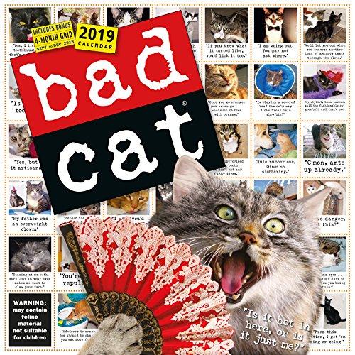 Bad Cat 2019 Calendar par Workman Publishing