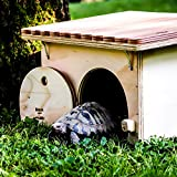 Blitzen Schildkröten-Haus für Landschildkröten, ohne Boden