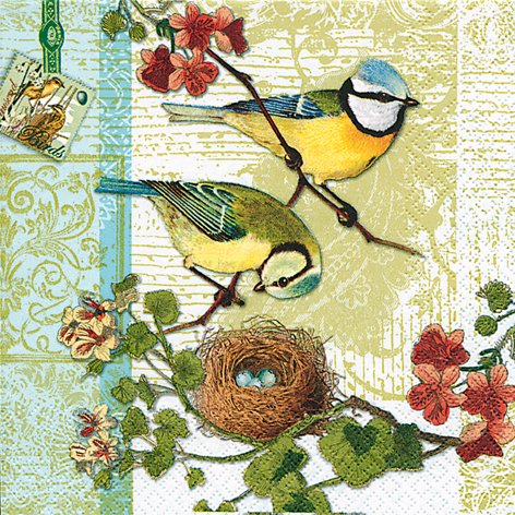 20 Servietten Bird Family - Blaumeise / Frühling 33x33cm