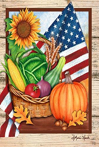 Toland Home Garden American Harvest 28x101,6 cm Dekorative Sommerfahne Gemüse USA Haus Flagge (Herrlichkeit Haus)
