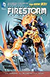 The Fury of Firestorm: The Nuclear Man Vol. 3: Takeover (The New 52)