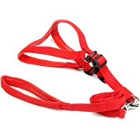 Pet Needs Soft Padded Pet Harness and Leash Set-Red- for Small Puppy-(0.75 INCH)