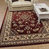 Alfombra persa tradicional, 120 x 170 cm, diseño floral clásico, color rojo