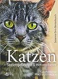 Katzen ? Seelengefährten & Herzeroberer: Ganzheitlicher Praxis-Leitfaden -