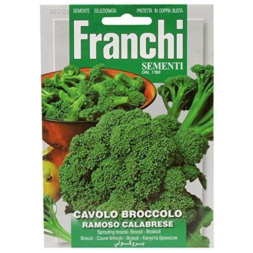 Seeds of Italy Ltd Franchi Brocoli calabrais
