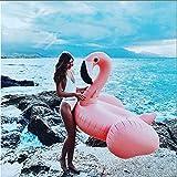 Bouée Flamant, Gonflable Flamingo Rose Flotteur de Piscine pour Piscine Adulte Enfant (Rose 150x150x100cm)