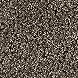 BODENMEISTER BM72375 Teppichboden Auslegware Meterware Hochflor Shaggy Langflor Velour braun 400 und 500 cm breit, Verschiedene Längen, Variante, 9 x 4 m