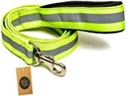 The Pets Company, Reflective Nylon Dog Leash with Collar Set for Medium Dogs, Green