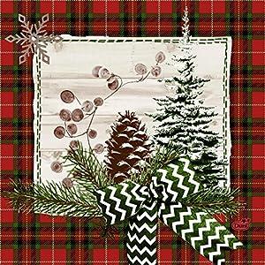 Duni Naturally Christmas - Tovaglioli natalizi, 33 x 33 cm, confezione da 50