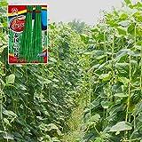 CWAIXX Farmer es vier Jahreszeiten Gartenterrasse im Frühjahr Gemüse Samen säen Gemüsesamen eingemachte Früchte Erdbeere Lauch und Koriander, Grüne Bohnen
